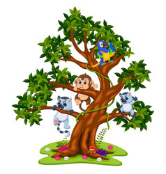 cute baby animal on the tree vector image