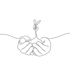 continuous one line growing sprout in hands of vector image