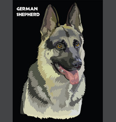 German shepherd colorful portrait vector