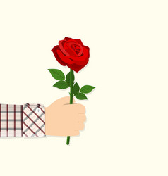 man holding in hand red rose vector image