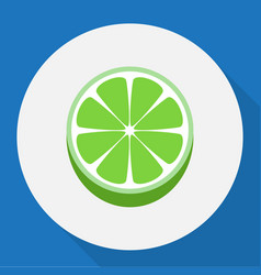 Of berry symbol on lime flat vector