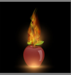 red apple with fire flame vector image