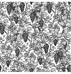 Seamless pattern with grape vine vector