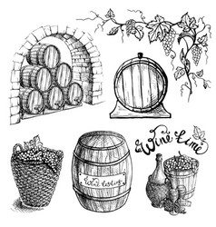 set of grape and wine barrels vector image