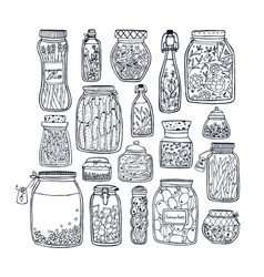 set of pickled jars with vegetables fruits herbs vector image