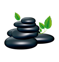 spa volcanic rocks with leaves icon vector image