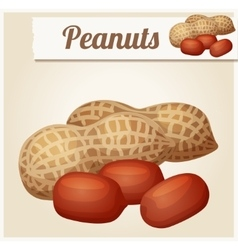 Peanuts Detailed Icon vector image