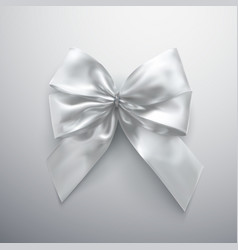 white bow and ribbons vector image vector image