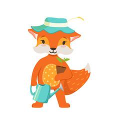 Cute orange fox gardener character funny cartoon vector