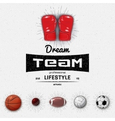 Dream Team insignia and labels for any use vector