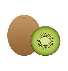 Fruit design over white background vector