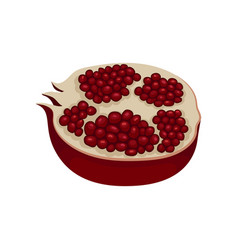 half of ripe pomegranate full of juicy seeds vector image