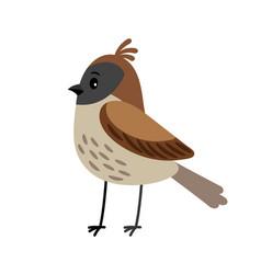 Sparrow funny cartoon bird vector