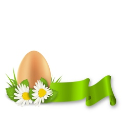 Traditional Easter egg with flowers daisy grass vector image