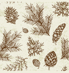 Vintage seamless pattern with evergreen plants vector