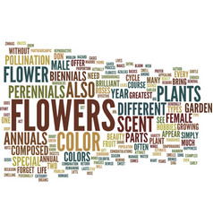 flowers an annual event text background word vector image vector image