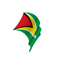 Guyana flag vector