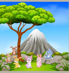 Many rabbit sitting on the rock with mountain vector
