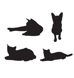 Set of cats Silhouettes isolated on a white vector image