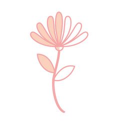 beauiful garden flower icon vector image