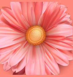 Blossoming bud flower close up pink flower bud vector