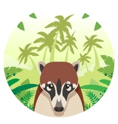 Coati on the Jungle Background vector image