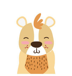 Colorful adorable and smile bear wild animal vector
