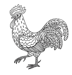 Contoured cock vector image