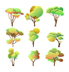 set of colorful trees different shape with leaves vector image