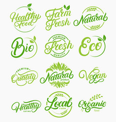 set organic local fresh healthy lettering vector image