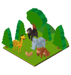 wild animals in forest in 3d design vector image