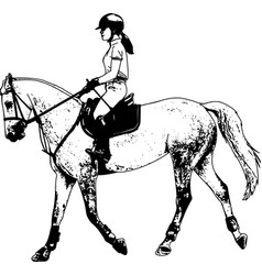 young female riding elegant horse sketch vector image