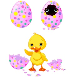 easter duckling vector image vector image