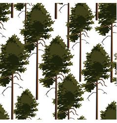 seamless pattern tree pine vector image