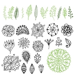 Zentangle nature collection Hand drawn vector image vector image