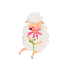 adorable fluffy sheep sitting and smelling flower vector image