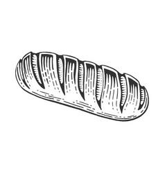 bread loaf sketch engraving vector image