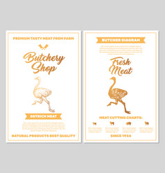 Butchery shop poster with ostrich meat cutting vector