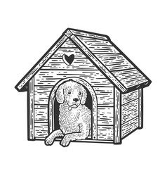 dog in booth sketch vector image