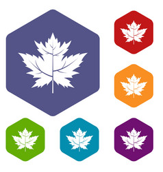 Gooseberry leaf icons set hexagon vector