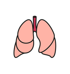 lungs - icon on white background vector image