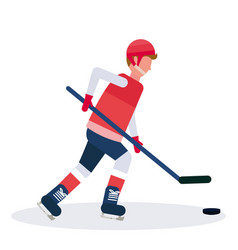 professional ice hockey player holding stick vector image
