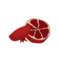 two halves of ripe red pomegranate organic fruit vector image