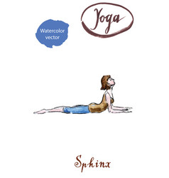 Young woman practicing yoga sitting in sphinx vector