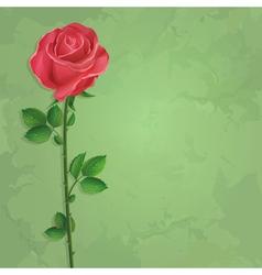Vintage floral background with flower rose vector image vector image