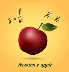 apple made equations and formula vector image