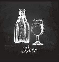 Hand sketched craft beer bottle and glass vector
