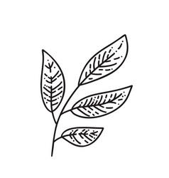 Monoline autumn leaves tree logo outline vector