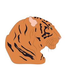 portrait of an orange tiger vector image