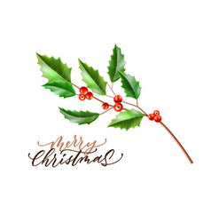 realistic merry christmas holly leaves fir vector image